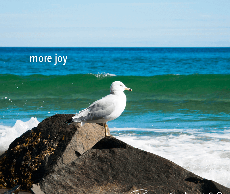 let's talk about joy